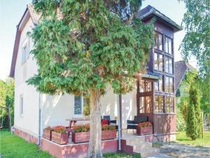 Holiday home Keszeg u-Balatonmariafürdö, Holiday homes  Balatonkeresztúr - big - 7