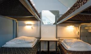 ドミトリールーム 男女共用 共用バスルーム付 ベッド計10台の1台