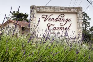The Vendange Carmel Inn & Suites