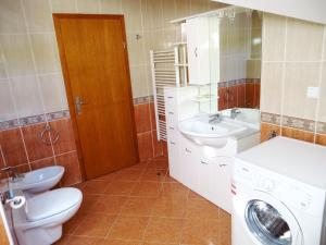 Villa Roses Apartments & Wellness, Apartmanok  Ičići - big - 41