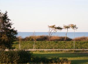 Ferienwohnungen Strandvilla Börgerende, Appartamenti  Börgerende-Rethwisch - big - 61