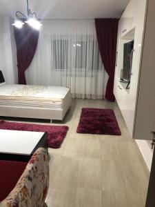 Ana Studio Apartment