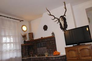 Vila Vanatorului, Alloggi in famiglia  Sinaia - big - 12