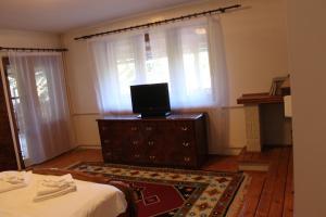 Vila Vanatorului, Alloggi in famiglia  Sinaia - big - 11