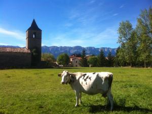 Casa Rural Cal Rei, Загородные дома  Lles - big - 14