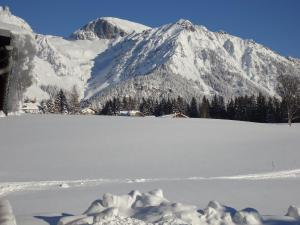 Jagerhäusl, Panziók  Ramsau am Dachstein - big - 13