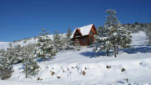 Previja Zlatibor Chalet, Horské chaty  Zlatibor - big - 6