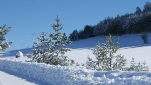 Previja Zlatibor Chalet, Horské chaty  Zlatibor - big - 34
