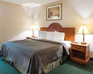 Quality Inn Petersburg, Hotel  Southern Estates - big - 12