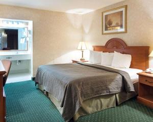 Quality Inn Petersburg, Hotel  Southern Estates - big - 10