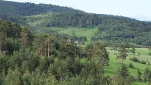Previja Zlatibor Chalet, Horské chaty  Zlatibor - big - 46