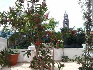 Bozcaada Su Hotel, Hotely  Bozcaada - big - 49