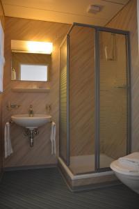 Albergo Cardada, Hotely  Locarno - big - 23