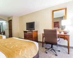 Comfort Suites Sumter, Hotels  Sumter - big - 14