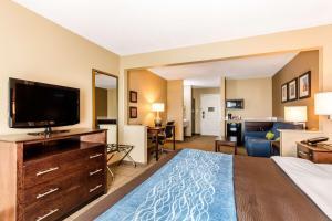 Comfort Inn & Suites Bryant - Benton, Hotels  Bryant - big - 6