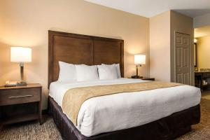 Comfort Suites Maingate East, Szállodák  Orlando - big - 16