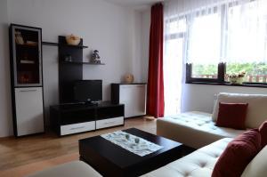 TES Flora Apartments, Apartments  Borovets - big - 52