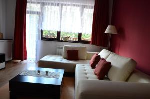TES Flora Apartments, Apartments  Borovets - big - 33