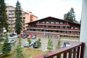 TES Flora Apartments, Apartments  Borovets - big - 29