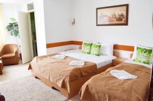 Villa Chesa, Hotely  Corunca - big - 3