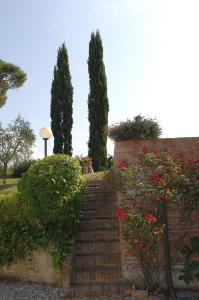 Azienda Agricola Buon Riposo, Ferienhöfe  San Giovanni a Corazzano  - big - 4