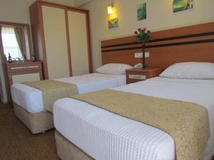 Dalyan Palmiye Resort Hotel, Hotels  Dalyan - big - 4