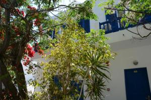 Acrogiali Hotel, Hotels  Platis Yialos Mykonos - big - 30