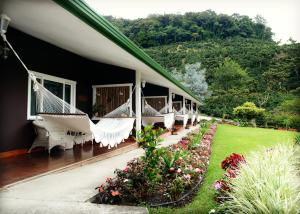 Deluxe Double Room with Two Queen Beds - Honey Mountain