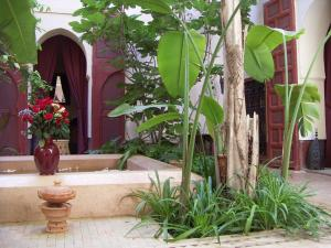 Dar El Calame, Riad  Marrakech - big - 12