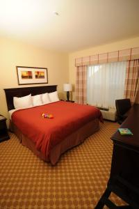 Country Inn & Suites by Radisson, Concord (Kannapolis), NC, Hotels  Concord - big - 8