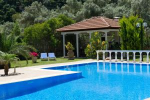 Villa Dimitris Apartments & Bungalows, Apartments  Lefkada Town - big - 1