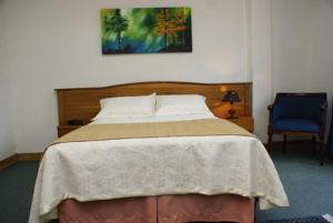Hotel Escorial, Szállodák  Manizales - big - 39