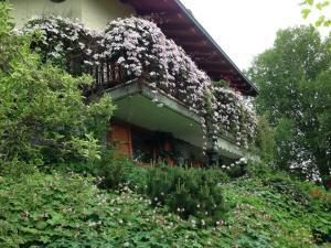Il Giardino Dell'Artemisia - Accommodation - Pila