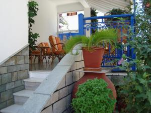 Vakhos, Hotels  Naxos Chora - big - 23