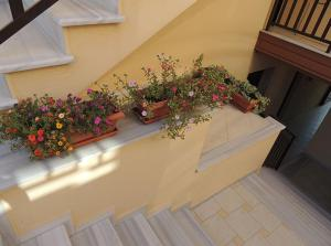Malamatenia House, Apartments  Sarti - big - 1