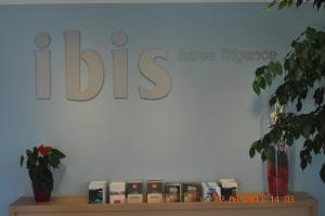 ibis Istres Trigance, Hotely  Istres - big - 17
