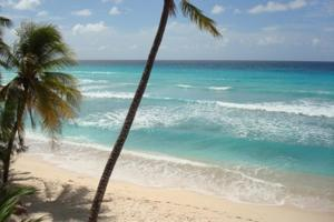White Sands Beach Condos (23 of 66)