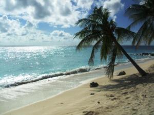White Sands Beach Condos (6 of 66)