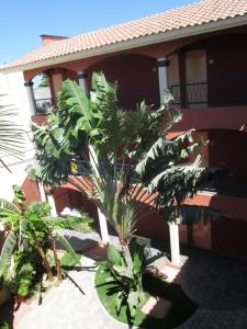 Estancia Real Los Cabos, Szállodák  Cabo San Lucas - big - 16