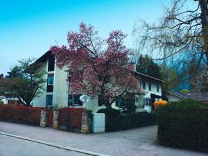 Gästehaus Christa Mauerer, Гостевые дома  Бад-Райхенхаль - big - 12