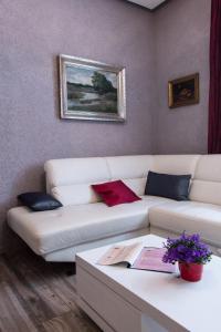 Luxusni Apartmany Stodolni, Aparthotels  Ostrava - big - 5