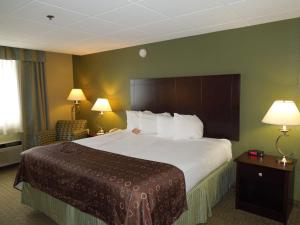 Best Western Airport Inn & Suites Cleveland, Szállodák  Brook Park - big - 6