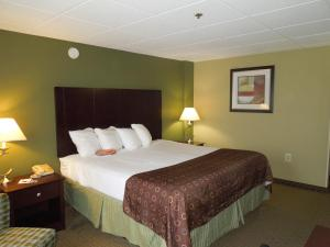 Best Western Airport Inn & Suites Cleveland, Szállodák  Brook Park - big - 7