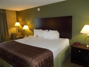 Best Western Airport Inn & Suites Cleveland, Szállodák  Brook Park - big - 9