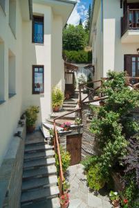 Iliovolo Guesthouse, Pensionen  Miléai - big - 68
