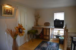 Guest House Mikas - Brizule