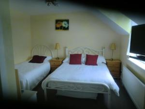 Ocean Villa Country Home, Bed and Breakfasts  Clifden - big - 15