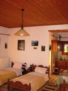 Gerakofolia Rooms to Let, Ferienwohnungen  Konitsa - big - 2