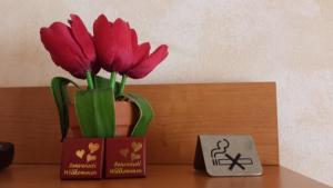 Primavera, Hotely  Levanto - big - 13