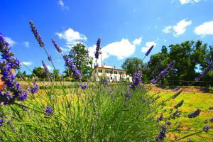 Cortona Resort & Spa - Villa Aurea, Hotels  Cortona - big - 60